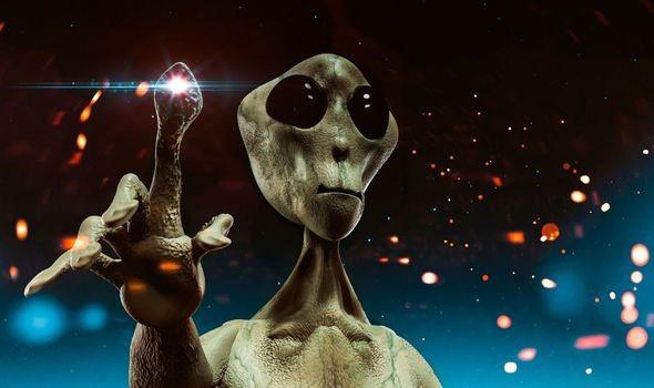 Phát hiện người ngoài hành tinh đang cho gà ăn trong đêm - Ảnh 3.