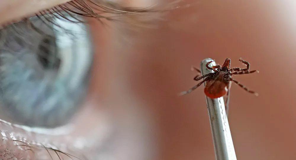 Trung Quốc ghi nhận một đợt bùng phát virus nguy hiểm mới - Ảnh 1.