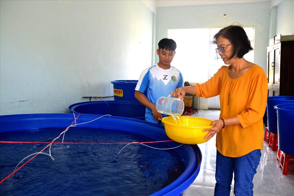 Một trường Đại học ở tỉnh Kiên Giang nhân giống thành công loài cá dày nhìn y hệt con cá lóc - Ảnh 3.