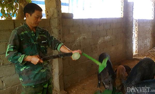 Thận trọng trong tái đàn lợn, nhiều nông dân xứ Lạng thắng lớn - Ảnh 3.