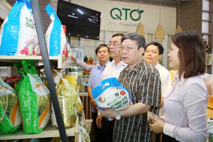 Gạo hữu cơ 'vô cùng sạch' của Quảng Trị bước ra thị trường - Ảnh 2.