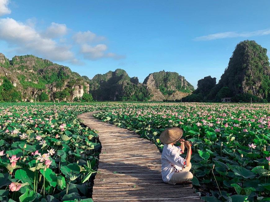 """Lạ Ninh Bình: Đang giữa mùa Thu, đầm sen """"kỳ lạ nhất Việt Nam"""" bỗng dưng nở rộ sắc màu - Ảnh 10."""