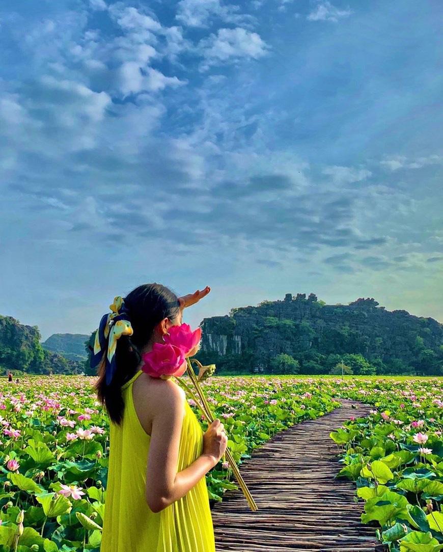 """Lạ Ninh Bình: Đang giữa mùa Thu, đầm sen """"kỳ lạ nhất Việt Nam"""" bỗng dưng nở rộ sắc màu - Ảnh 7."""