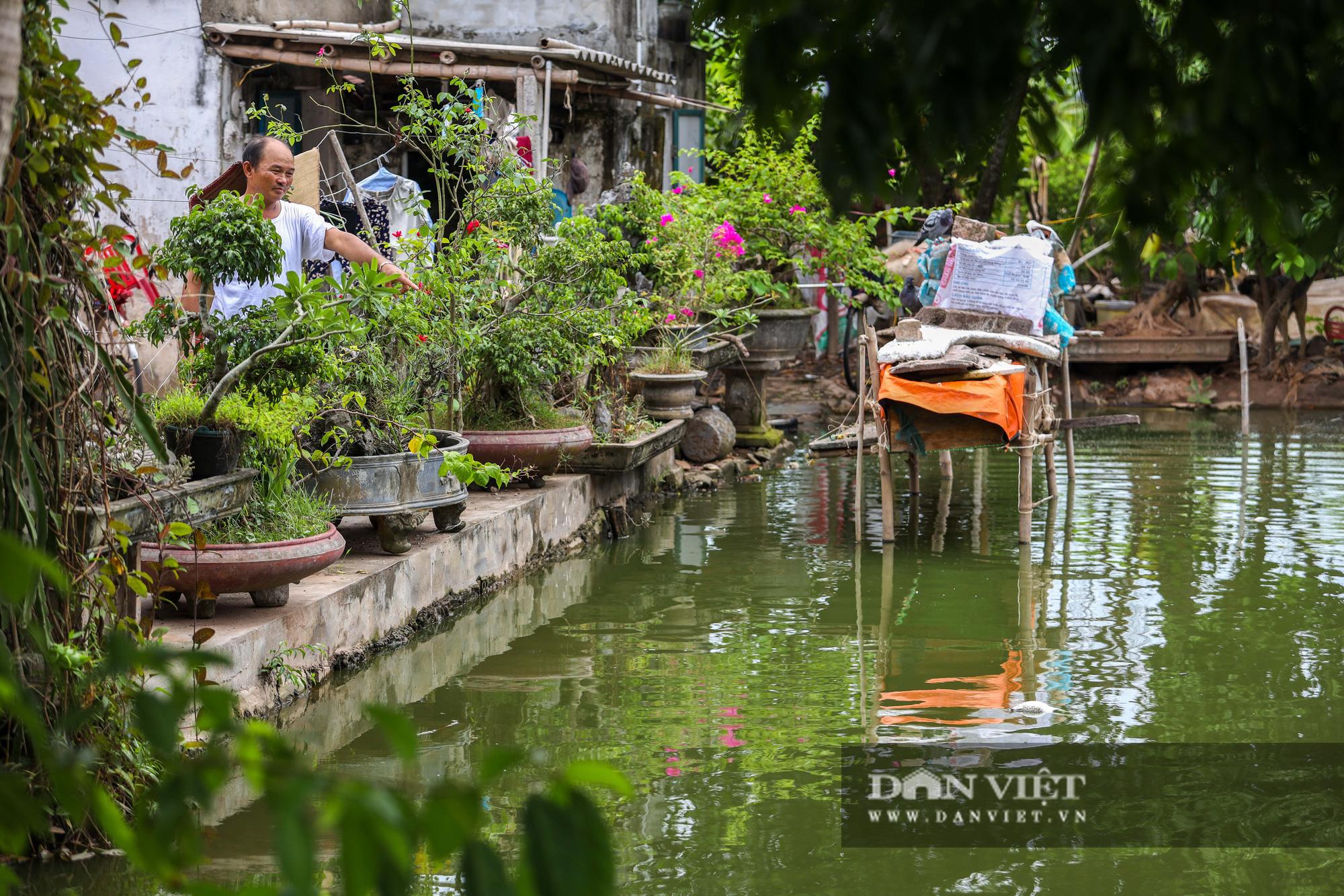 Nam Định: Dân khốn đốn vì trang trại lợn 1.500 con xả thải ra sông - Ảnh 11.