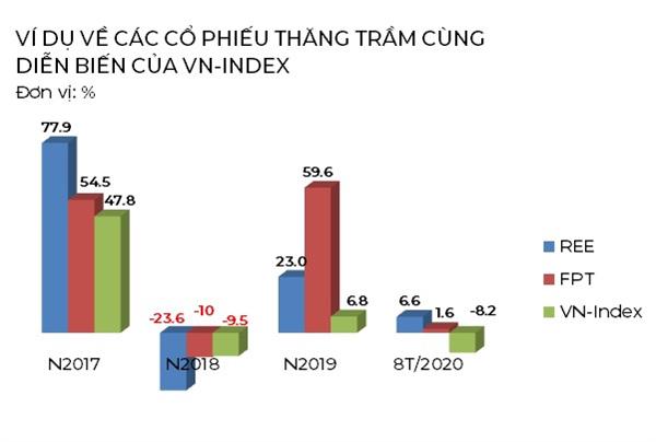 Đầu tư dài hạn và cơ hội đem lại lợi nhuận lớn trên thị trường chứng khoán Việt Nam - Ảnh 2.
