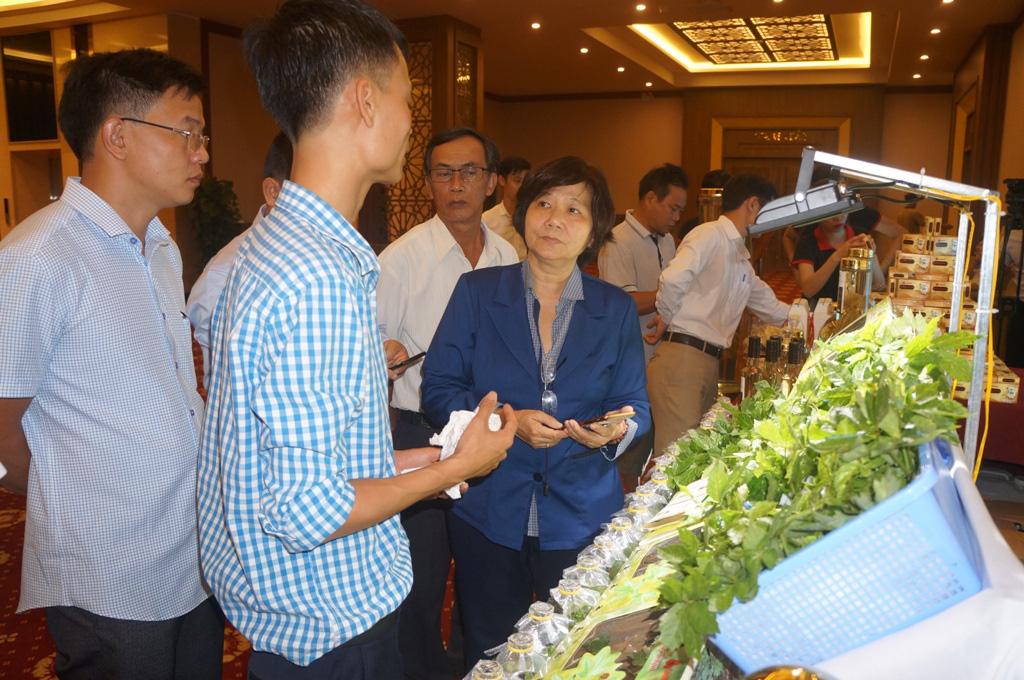 """Quảng Nam: Bán gần 22.000 cây """"đẻ trứng vàng"""" cho doanh nghiệp và người dân - Ảnh 1."""