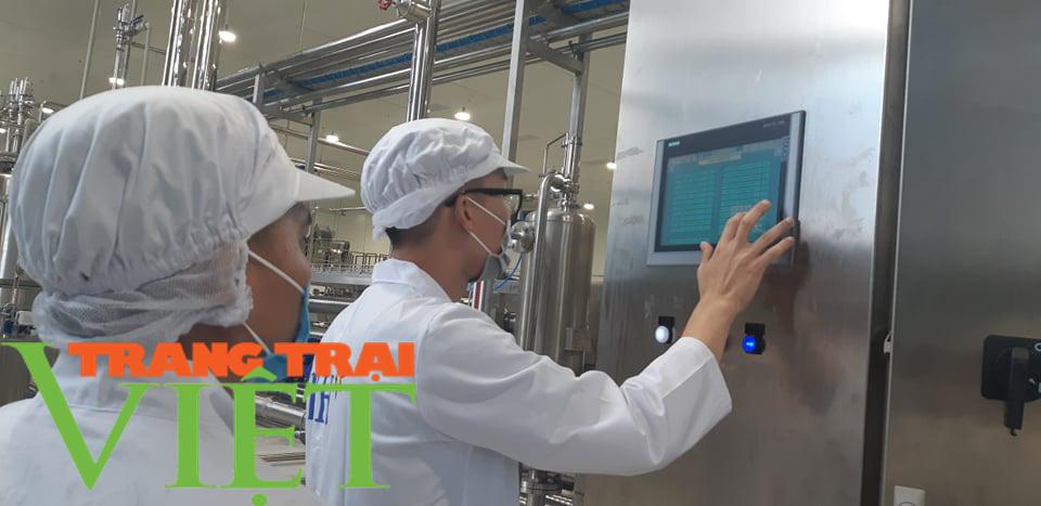 Nhà máy chế biến hoa quả tươi hiện đại nhất đất Tây Bắc chuẩn bị hoạt động - Ảnh 10.