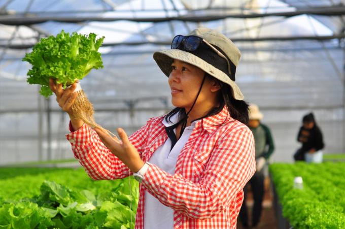 Nông nghiệp thông minh 4.0: Kinh nghiệm từ Lâm Đồng - Ảnh 3.