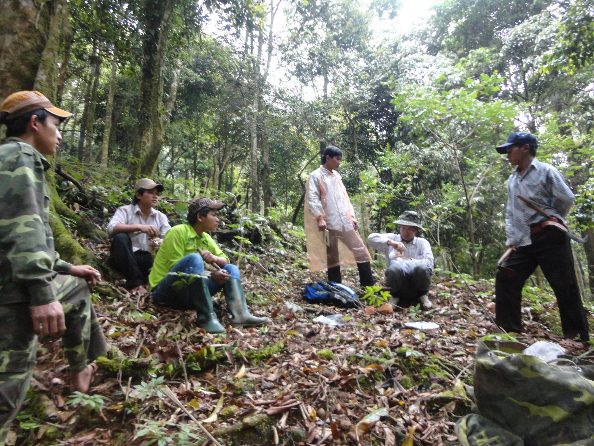 """Quảng Nam: Bán gần 22.000 cây """"đẻ trứng vàng"""" cho doanh nghiệp và người dân - Ảnh 3."""