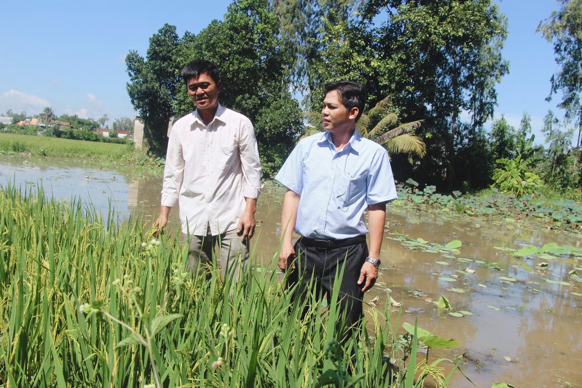 Bí quyết của thầy giáo nghèo trở thành nông dân xuất sắc toàn quốc - Ảnh 5.