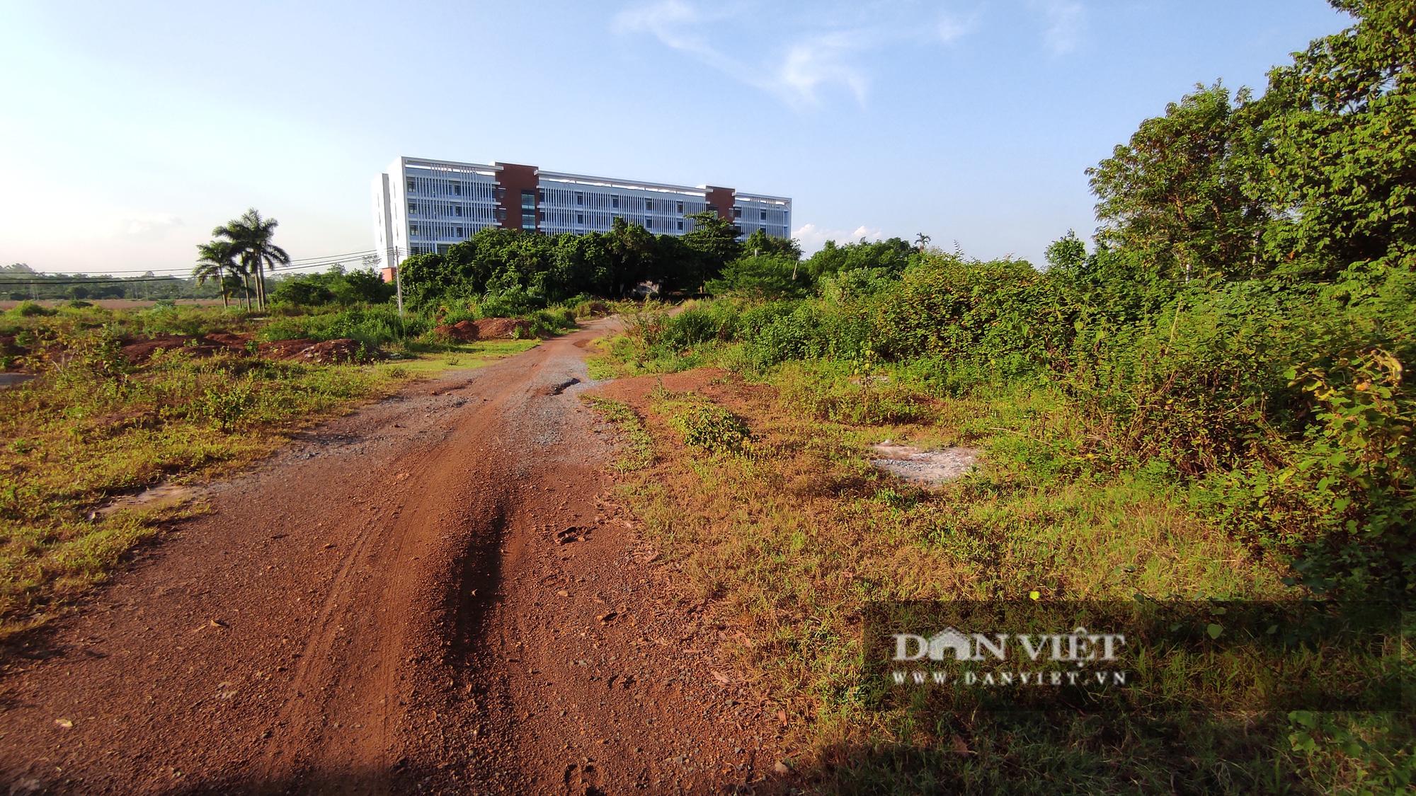 Bài 1: Hàng nghìn người dân sống khổ sở vì dự án ĐHQG Hà Nội ở Hòa Lạc - Ảnh 4.
