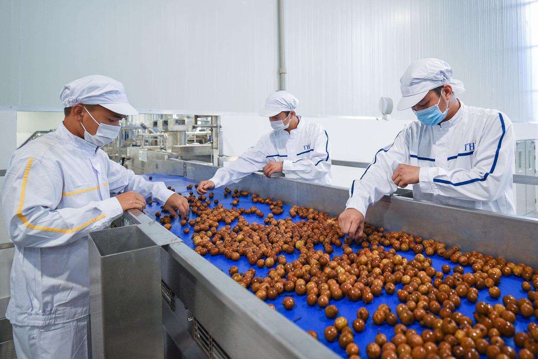 """Sơn La: Bên trong nhà máy chế biến hoa tươi và thảo dược thuộc tốp """"khủng"""" nhất đất Việt - Ảnh 5."""