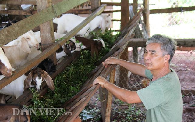 CLip Giám đốc trẻ và mơ ước chế biến hồ tiêu hữu cơ cho người Việt - Ảnh 9.