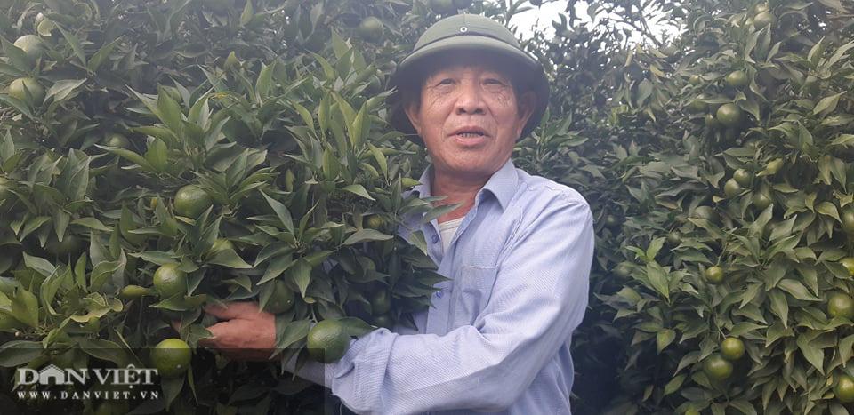 Vựa hoa quả Sơn La sẵn sàng cung ứng hàng cho nhà máy chế biến - Ảnh 1.