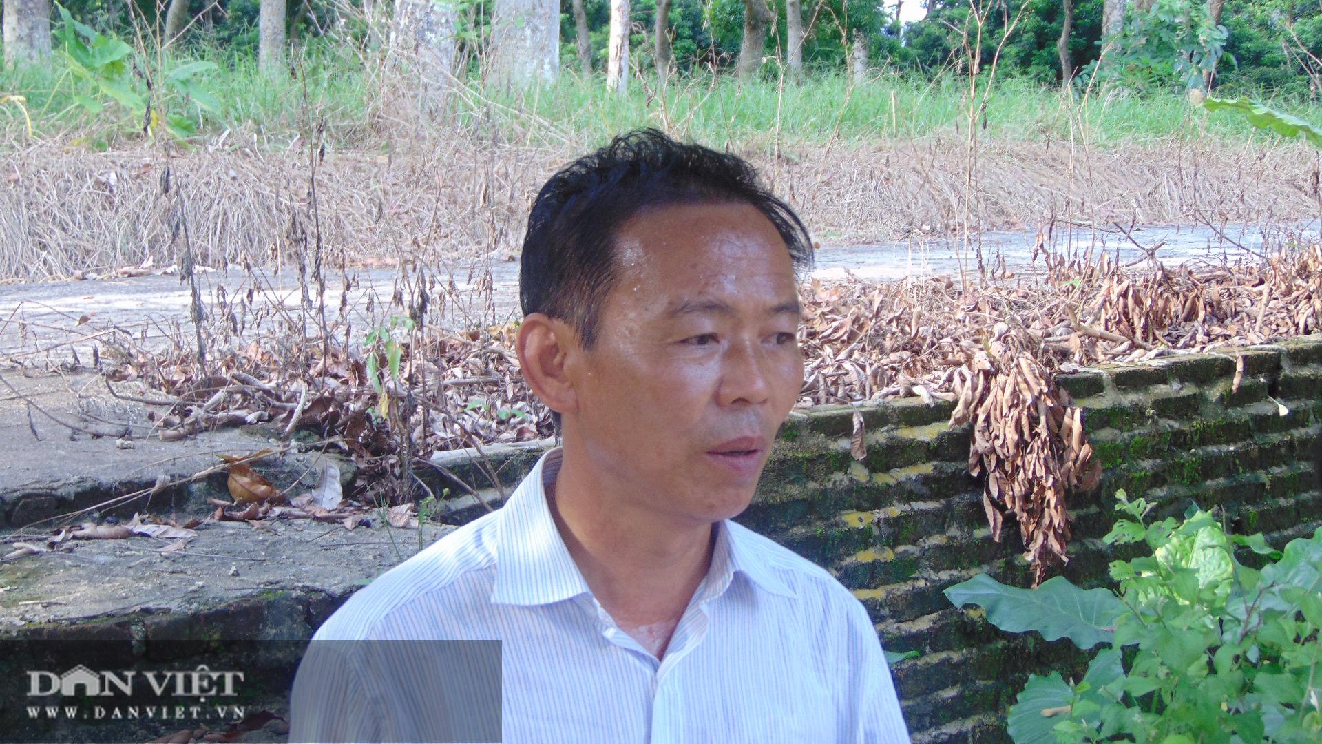 Thái Nguyên: Chết hàng chục tấn cá nghi do ao bị nhiễm nguồn nước độc lạ - Ảnh 2.