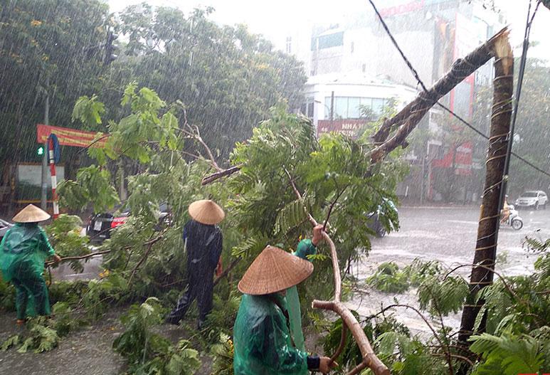 Quảng Bình: 4 người dân tộc trốn bão số 5 vào rừng, 1 phụ nữ chặt cây ngã sọ não - Ảnh 1.