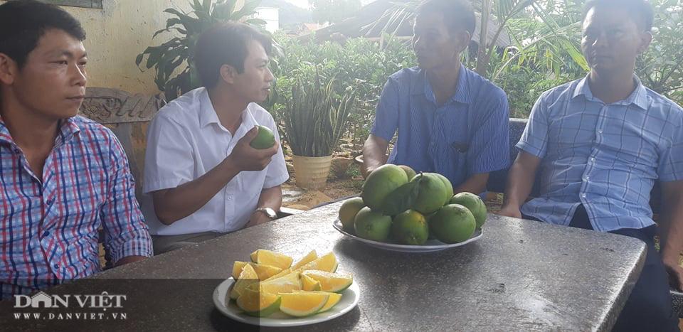 Ước mơ nhiều đời của nông dân Sơn La đang trở thành hiện thực - Ảnh 3.