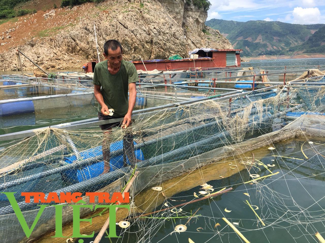 Nông dân vùng lòng hồ sông Đà khấm khá nhờ nuôi cá lồng - Ảnh 5.