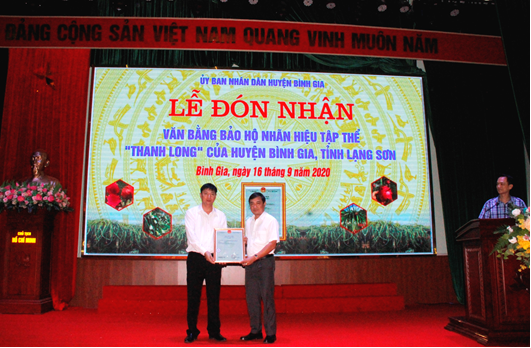Lạng Sơn: Thêm 1 sản phẩm nông nghiệp nhận bằng bảo hộ nhãn hiệu tập thể - Ảnh 2.
