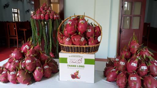 Lạng Sơn: Thêm 1 sản phẩm nông nghiệp nhận bằng bảo hộ nhãn hiệu tập thể - Ảnh 1.
