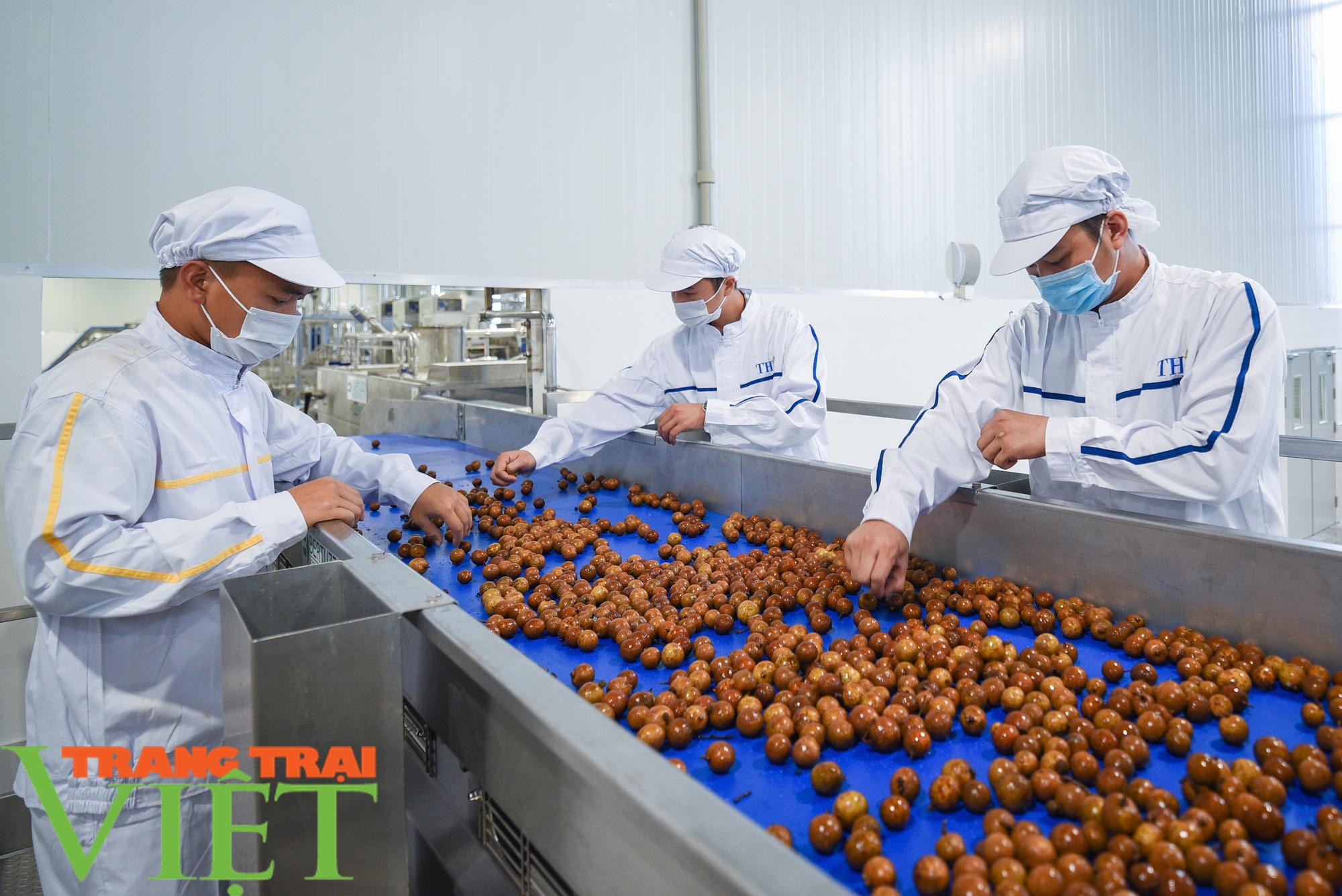 Nhà máy đi vào hoạt động sẽ giúp đảm bảo đầu ra cho nông sản Sơn La - Ảnh 1.