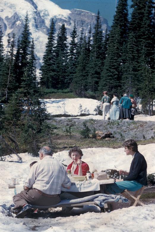 Các công viên tại Mỹ cách đây 70 năm như thế nào? - Ảnh 12.