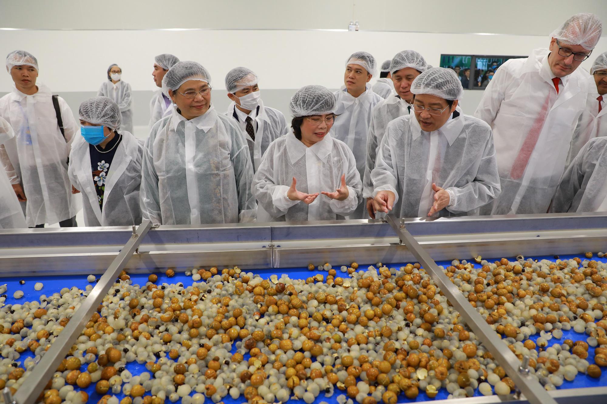 Phó Chủ tịch Thường trực Quốc hội: Có nhà máy chế biến, nông dân Sơn La không lo được mùa mất giá - Ảnh 2.