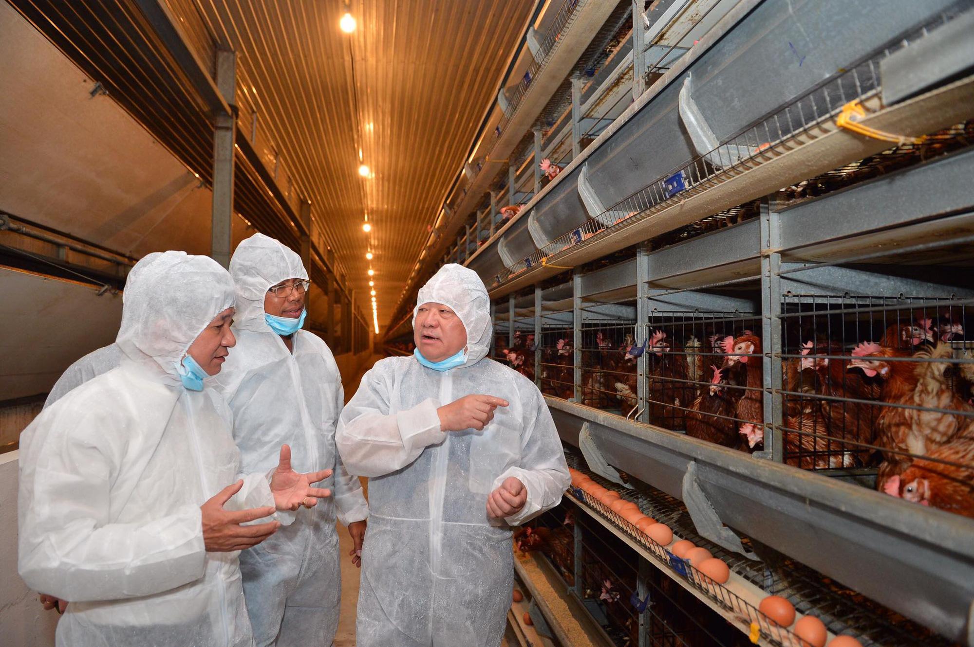 Nữ hoàng hột vịt Ba Huân được mời dạy nông dân cách nuôi gà hiệu quả - Ảnh 1.
