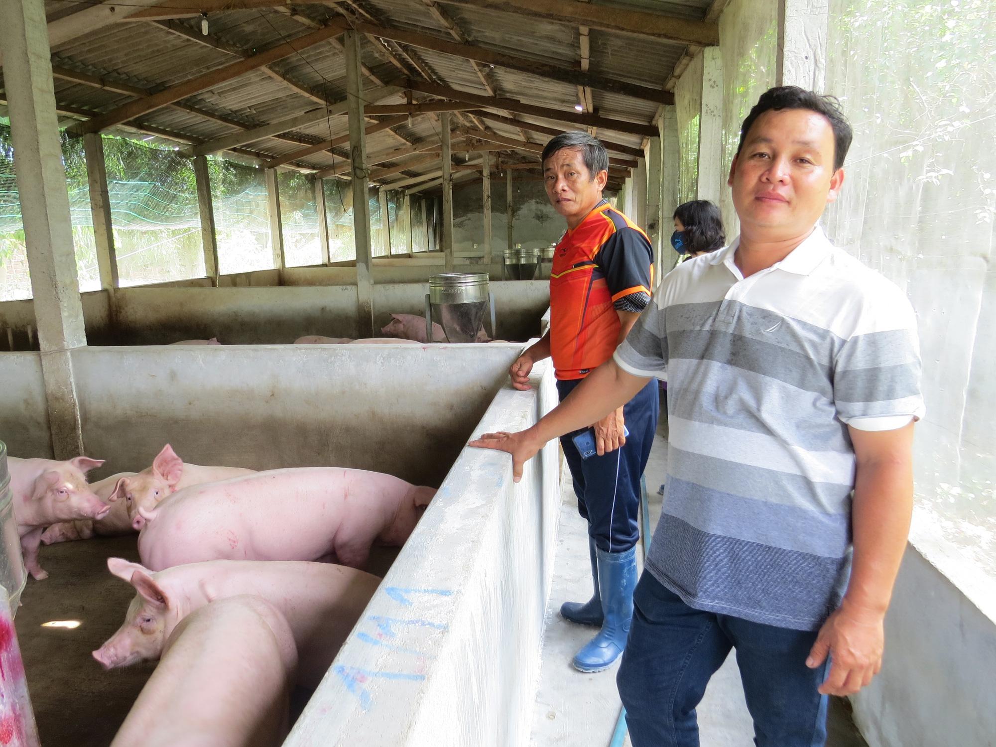 Nông dân Việt Nam xuất sắc 2020: Tỷ phú nuôi heo tuổi 30 ở Phú Yên - Ảnh 3.
