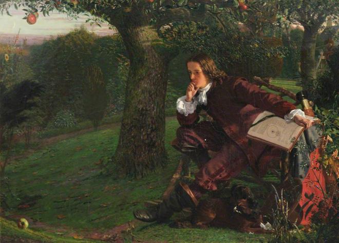 Cây táo của Newton vẫn ra quả dù đã 400 tuổi - Ảnh 1.