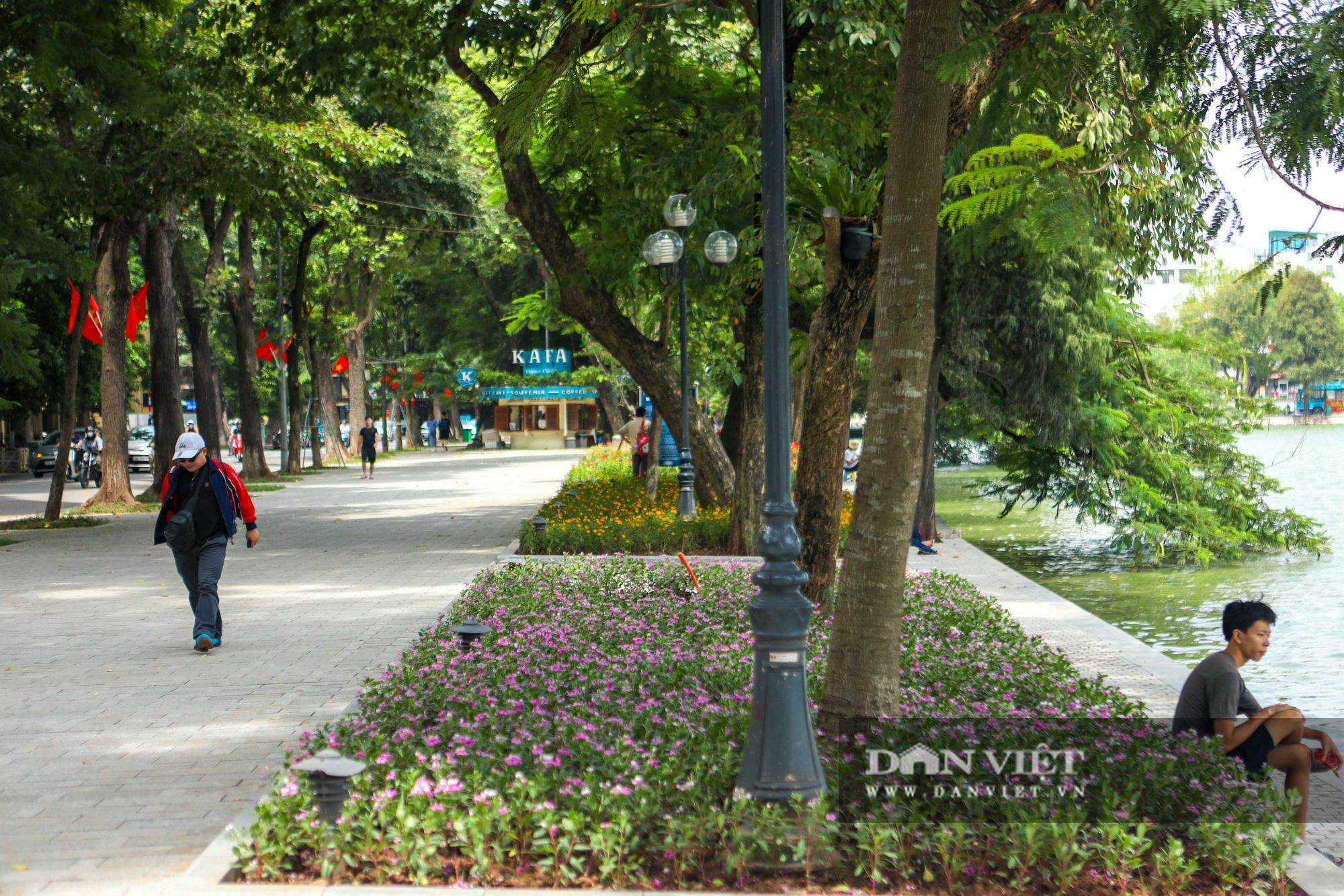 Chiêm ngưỡng vườn hoa mới đẹp ngỡ ngàng bên bờ hồ Hoàn Kiếm  - Ảnh 1.
