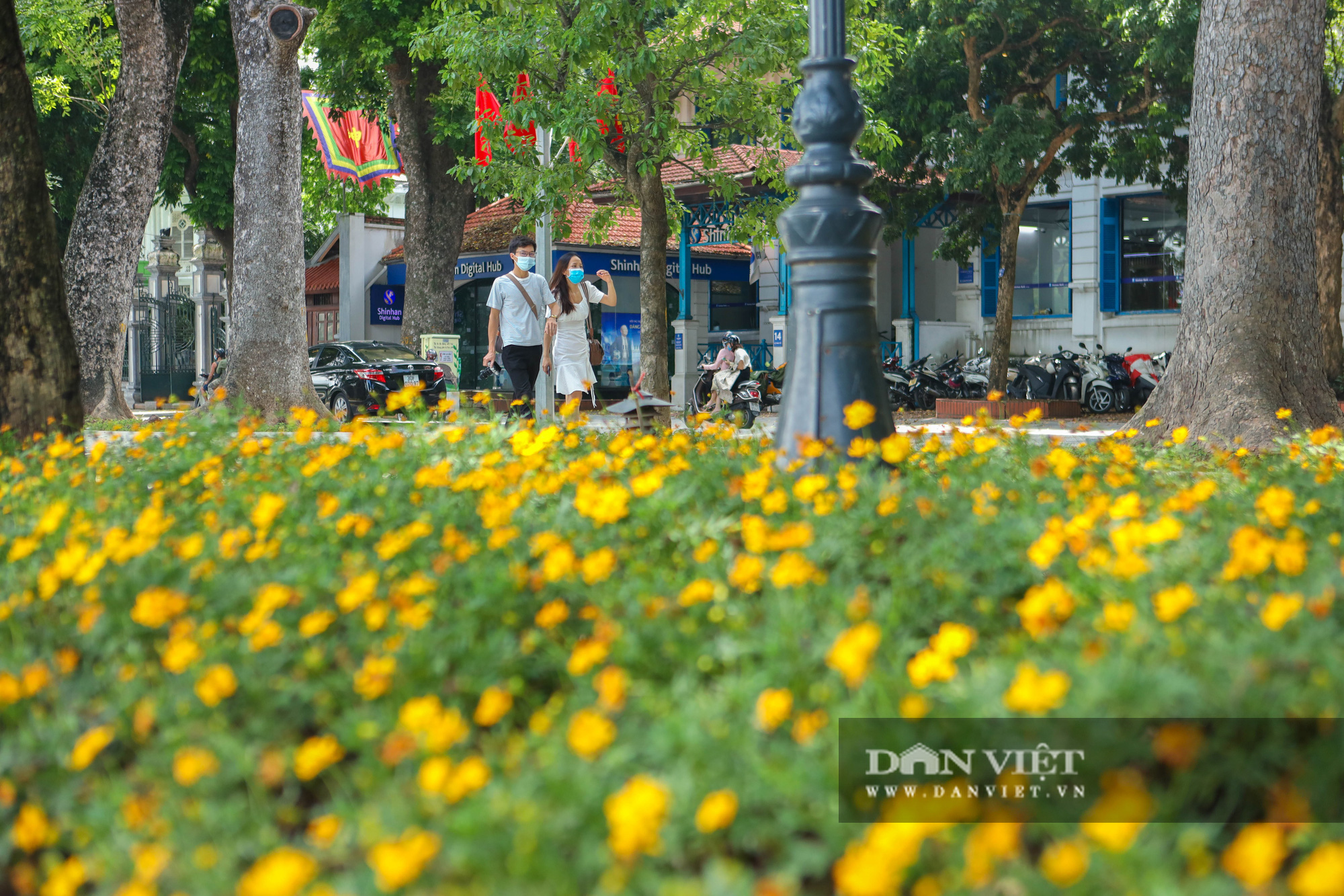 Chiêm ngưỡng vườn hoa mới đẹp ngỡ ngàng bên bờ hồ Hoàn Kiếm  - Ảnh 4.