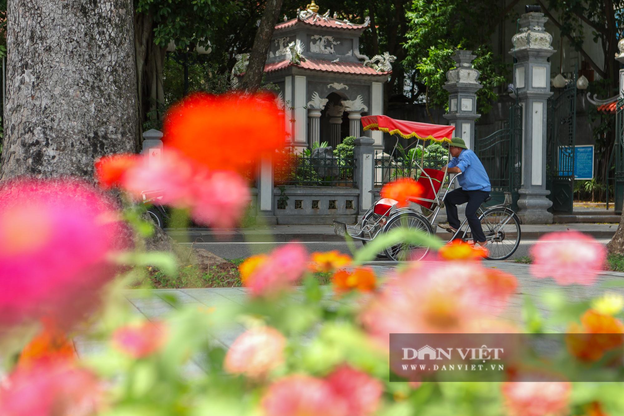 Chiêm ngưỡng vườn hoa mới đẹp ngỡ ngàng bên bờ hồ Hoàn Kiếm  - Ảnh 11.