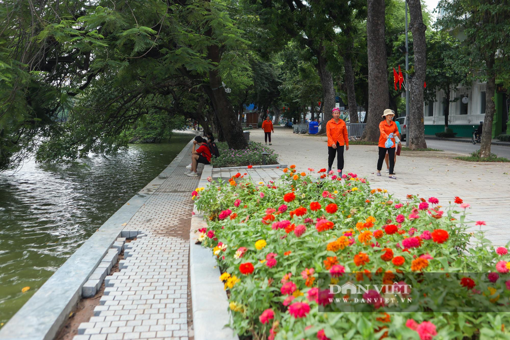 Chiêm ngưỡng vườn hoa mới đẹp ngỡ ngàng bên bờ hồ Hoàn Kiếm  - Ảnh 12.