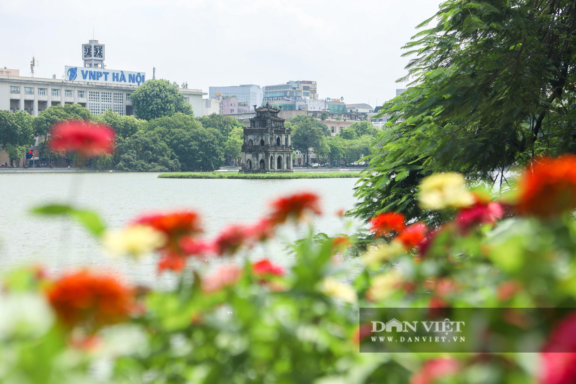 Chiêm ngưỡng vườn hoa mới đẹp ngỡ ngàng bên bờ hồ Hoàn Kiếm  - Ảnh 14.