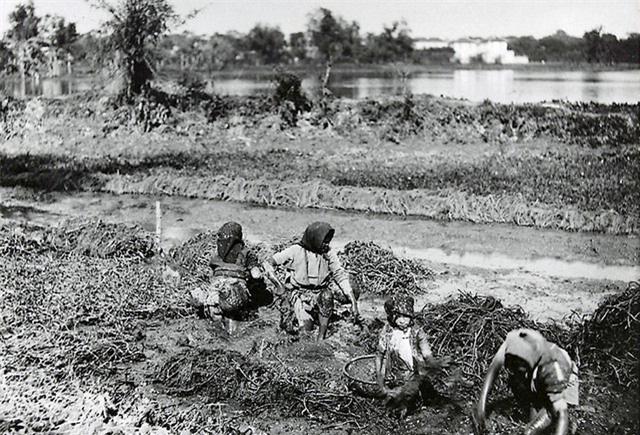 Những bức ảnh cực hiếm về phụ nữ nông thôn Việt Nam đầu thế kỷ 20 - Ảnh 4.