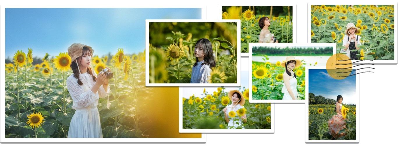 Đồi hoa mặt trời Ecopark khoe sắc đón thu sang - Ảnh 20.