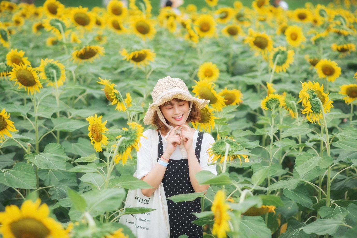 Đồi hoa mặt trời Ecopark khoe sắc đón thu sang - Ảnh 23.