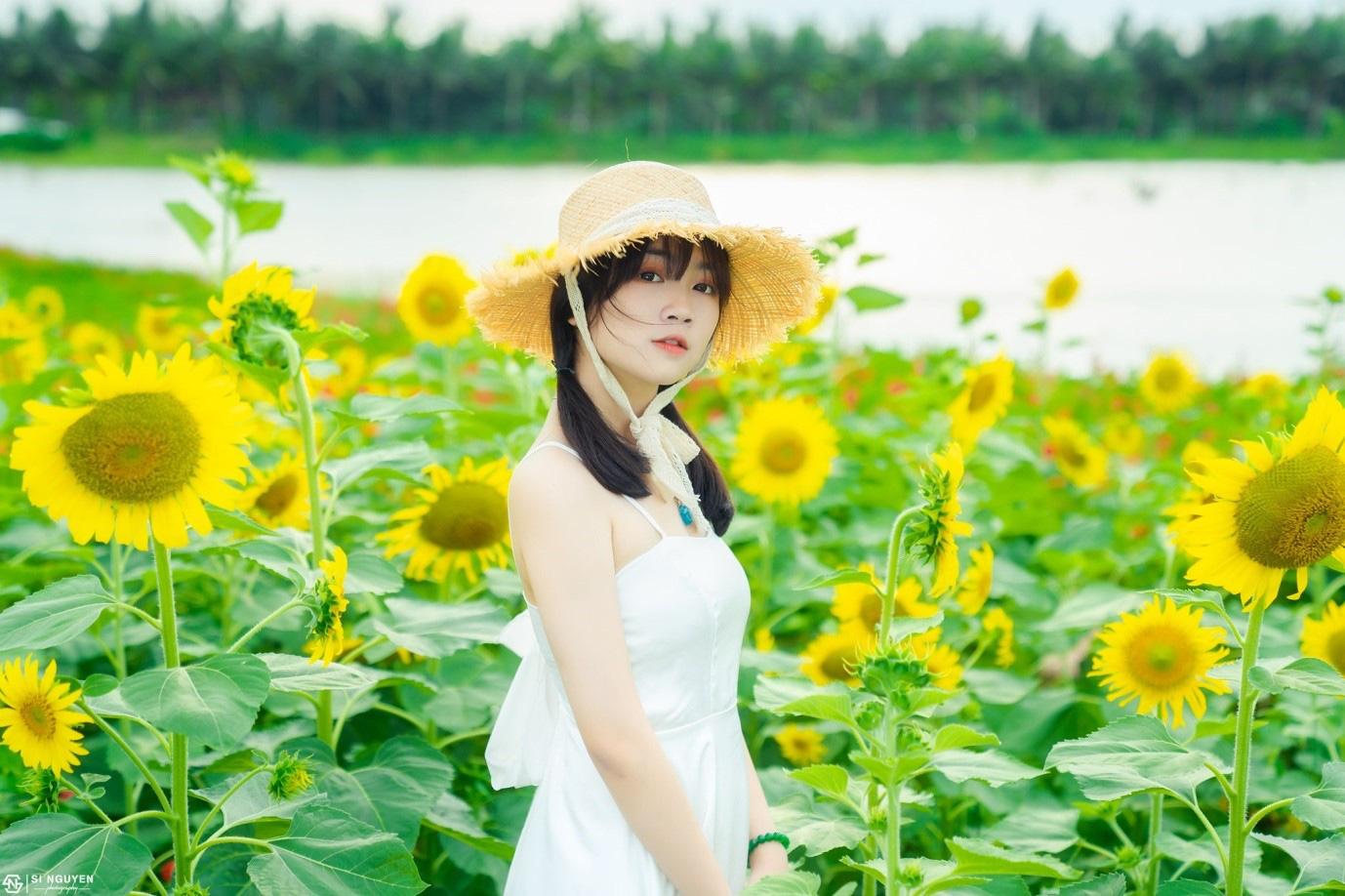 Đồi hoa mặt trời Ecopark khoe sắc đón thu sang - Ảnh 15.