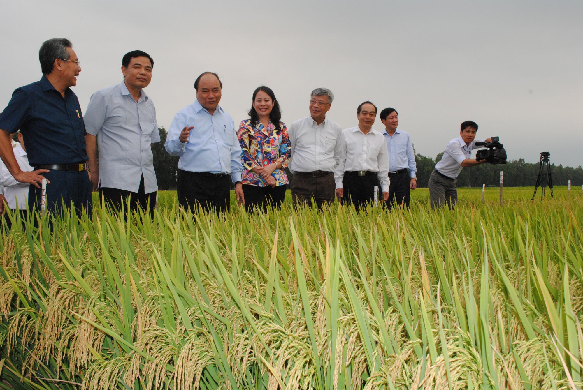 An Giang: Lấy nông nghiệp và du lịch làm nền tảng, động lực phát triển kinh tế - Ảnh 1.