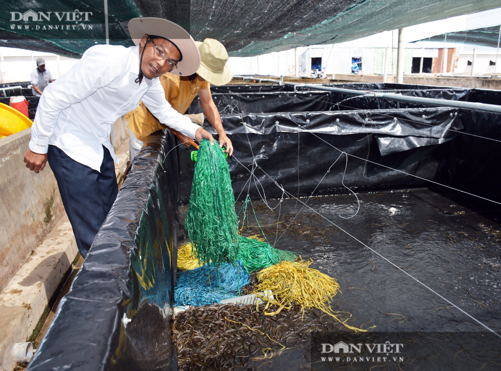 Bạc Liêu: Chàng kỹ sư bỏ công ty nước ngoài về làm nông dân nuôi 15 loài thủy sản - Ảnh 7.