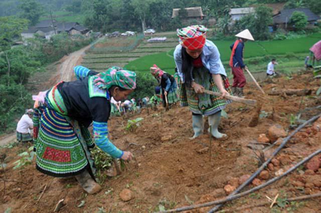 Yên Bái vượt 3 lần mục tiêu về số xã đạt chuẩn Nông thôn mới của tỉnh - Ảnh 1.