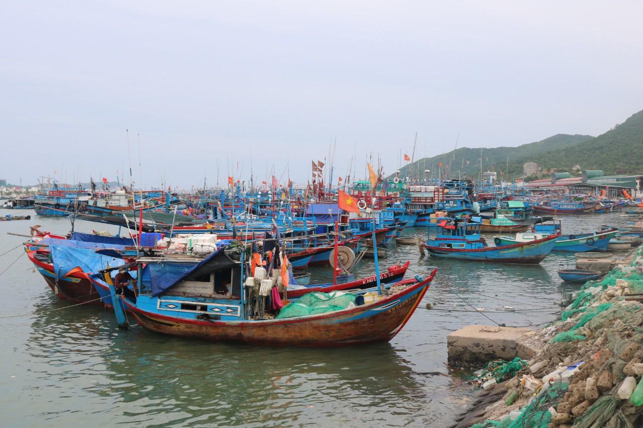 Xây dựng, nâng cấp các cảng cá và khu neo đậu tránh trú bão - Ảnh 2.