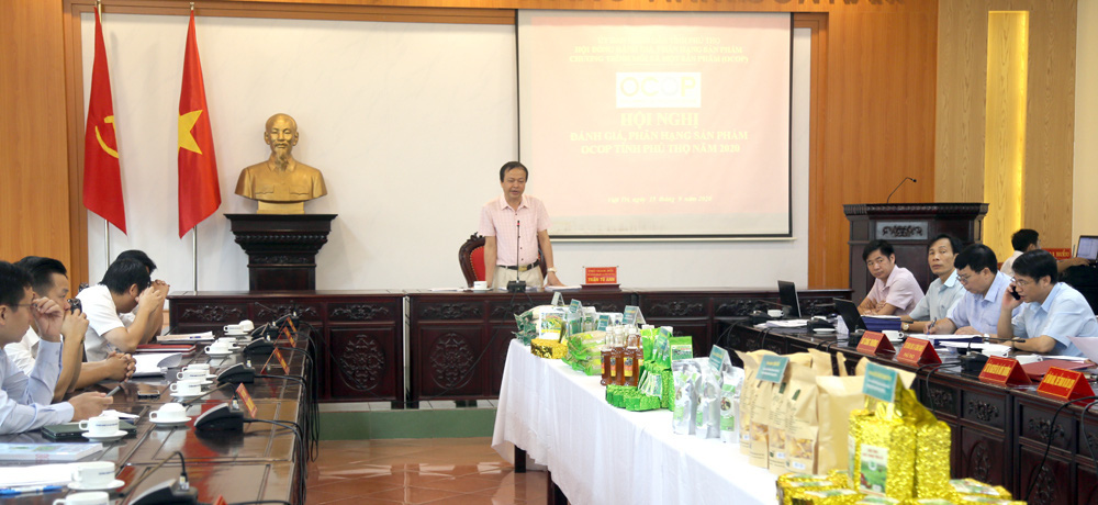 Phú Thọ: Huy động hơn 13 nghìn tỷ đồng đầu tư xây dựng nông thôn mới - Ảnh 2.