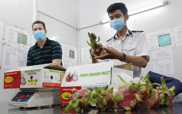 Chuyên gia kiểm dịch trái cây xuất khẩu của Mỹ làm việc trở lại: tin vui chồng tin vui - Ảnh 4.