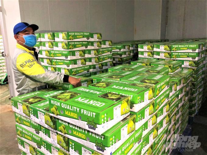 Trái cây tươi Việt Nam xuất khẩu bình thường trở lại thị trường Hoa Kỳ - Ảnh 1.