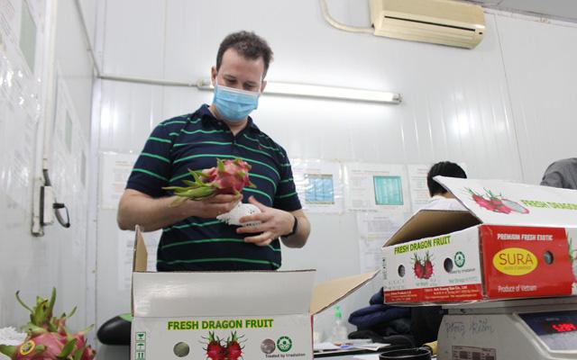 Chuyên gia kiểm dịch trái cây xuất khẩu của Mỹ làm việc trở lại: tin vui chồng tin vui - Ảnh 3.
