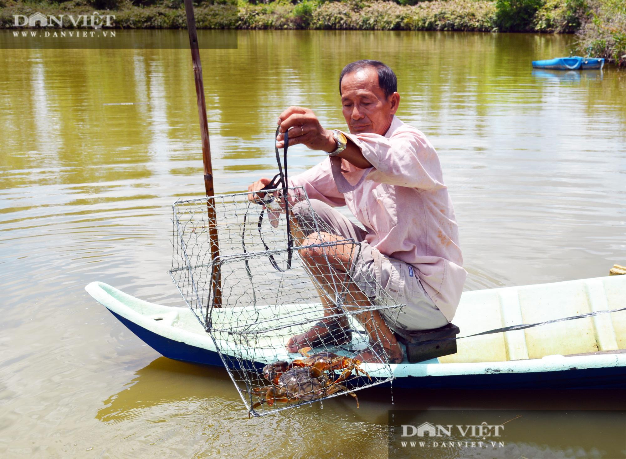 """Nuôi tôm hung dữ, bắt cá leo cây, và cơ man đặc sản """"độc, lạ"""" ở tỉnh Cà Mau, nhìn thôi đã thấy thèm Logo-logo-cua-16010505176471130840825"""