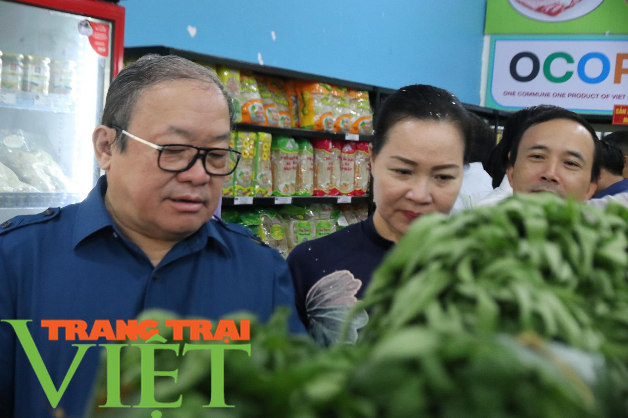 Gần 3,8 vạn nông dân tỉnh Hòa Bình đạt danh hiệu sản xuất, kinh doanh giỏi - Ảnh 1.