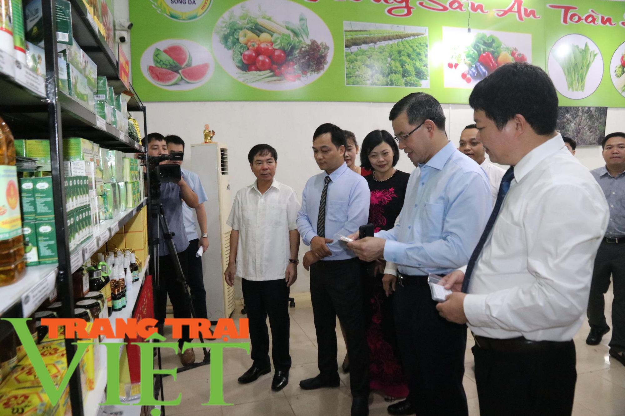 Gần 3,8 vạn nông dân tỉnh Hòa Bình đạt danh hiệu sản xuất, kinh doanh giỏi - Ảnh 3.